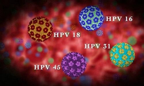 Virus HPV là gì ? Cách chữa và phòng tránh