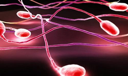 Xuất tinh ra máu: nguyên nhân, chi phí và cách điều trị